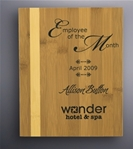 The rich look of the Bamboo Plaque will accent any personalized message. With this combination of light and honey colored Bamboo reward your best employees with professional laser engraving, a lasered or sublimated plate.Additional Charges For Engraving and Logos